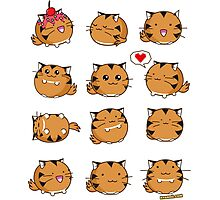 Fuzzballs Kawaii Tiger Photographic Print