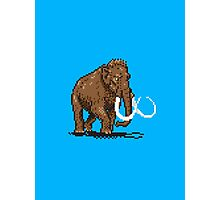 Prehistoric Pixels - Mammoth Photographic Print