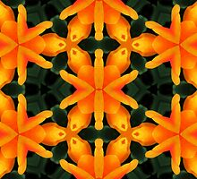 Kaleidoscope Geometry Pattern From Nature 48 by Kenneth Grzesik