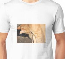 Ginger cat Unisex T-Shirt