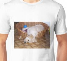 LR puppy laying in basket yellow Unisex T-Shirt