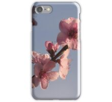 Peach blossoms in Spring iPhone Case/Skin