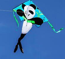 Dancing Panda in the Sky by Heather Friedman