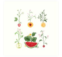 Fruity Flowers Art Print