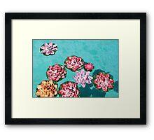 Pseudo Lilies Framed Print