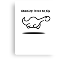 Stanley flies Canvas Print