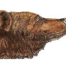 Bear Necessities by Inkspot by M.R.  Inkspot