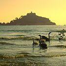 Sunset Swans by Mark Wilson
