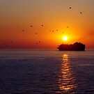 Sailing into the Sunset by Mark Wilson