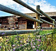 Montana Barn by tvlgoddess