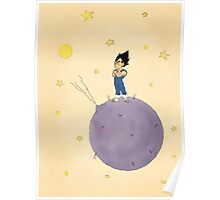 The Little Prince Of Saiyans Poster