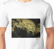 Yellow blossoms Leith Park Victoria 20160906 7485 Unisex T-Shirt