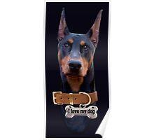 Doberman - Ilove my dog Poster