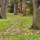 Path at Julia Davis Park by Kathleen  Bowman