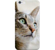Cat portrait iPhone Case/Skin