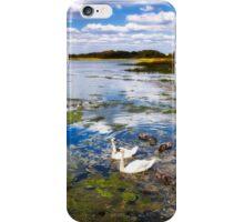 River Yar Swans iPhone Case/Skin