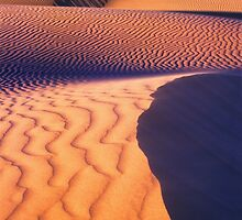 Dune Patterns, Western Australia by Kevin McGennan