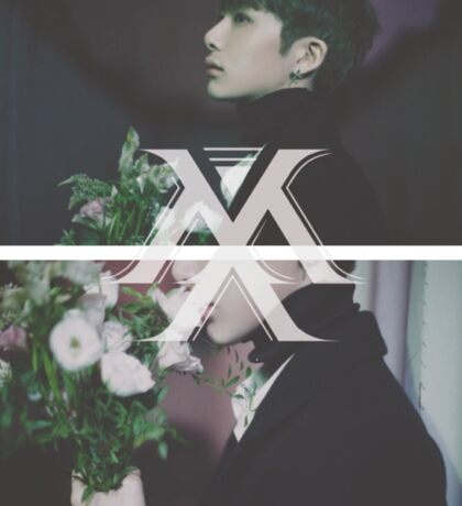 Monsta X | Hyungwon Sticker