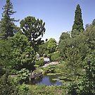 Duck Pond, Botanical Gardens by Derwent-01