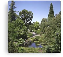 Duck Pond, Botanical Gardens Canvas Print
