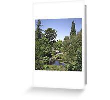 Duck Pond, Botanical Gardens Greeting Card