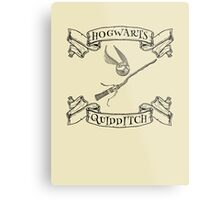 Hogwarts Quidditch with Snitch and Quidditch Broom Metal Print
