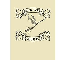 Hogwarts Quidditch with Snitch and Quidditch Broom Photographic Print
