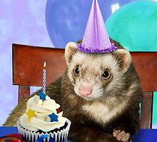 Birthday Ferret by jkartlife