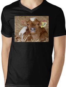 I Have Perfect Teeth! - Calf NZ Mens V-Neck T-Shirt