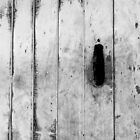 Boat shed door by Maggie Hegarty