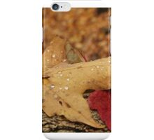 Fall in New York State iPhone Case/Skin