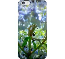 Backlit hydrangea. iPhone Case/Skin