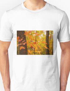 A Touch Of Orange Unisex T-Shirt