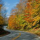 Autumn Roadway by AnnDixon