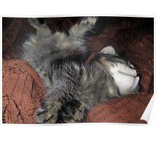 Sleeping Mikino 3 Poster