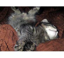 Sleeping Mikino 3 Photographic Print