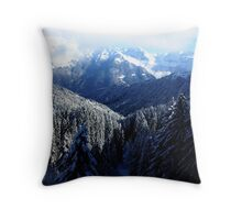 Frost Valley Throw Pillow