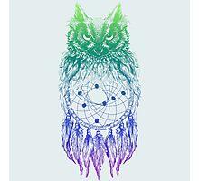 Dreamy Owl_Multi Blue Photographic Print