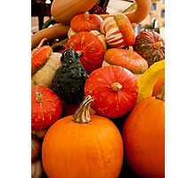 Fruit of the Harvest Photographic Print