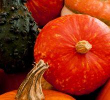 Fruit of the Harvest Sticker