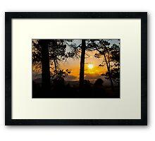 Forest's Edge Framed Print