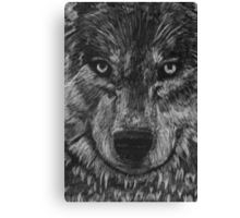 Portrait: Lone Wolf Canvas Print
