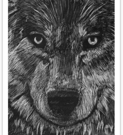 Portrait: Lone Wolf Sticker