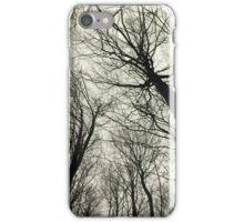 Branches Sepia - Ramas sepia  iPhone Case/Skin