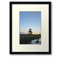 tree. Framed Print