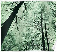 Branches 2 Green - Ramas 2 verde Poster