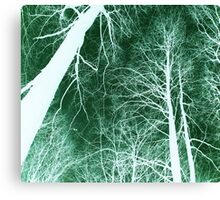 Branches lightning green - Ramas rayo verde Canvas Print