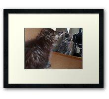 Mikino - Kitten Reflection Framed Print