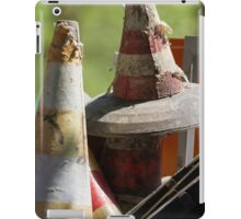 road cone in the meadow iPad Case/Skin