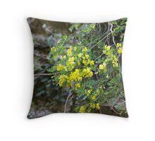 flowers in the rock Throw Pillow